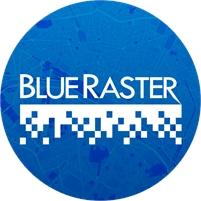 Blue Raster Angela Wertman